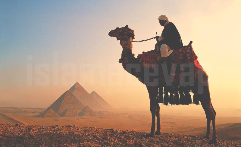 pyramids giza - ภาษาอาหรับ